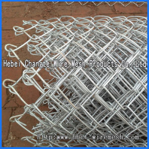 Plastic Coated Chain Link Fence pictures & photos