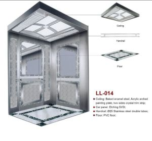 Syney Passenger Elevator for Home (LL-014) pictures & photos