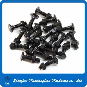 DIN603 DIN 603 Black Finish Carriage Bolt and Nut pictures & photos