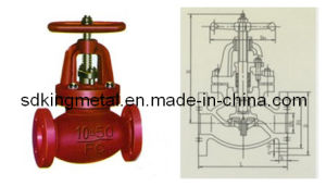 Shipbuilding Cast Iron 10k Screw Down Check Globe Valves pictures & photos