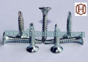 Screw/Csk Head Galvanized Self Drilling Screw pictures & photos