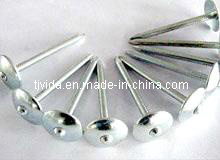 Decorative Galvanized Umbrella Head Roofing Nail Direct From Factory pictures & photos