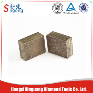 China Arix Granite Diamond Segment pictures & photos