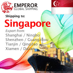 Sea Freight Shipping From China to Singapore