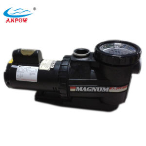 750W Swimming Pool Electric Water Circulation Pump pictures & photos