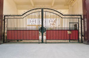 Wrought Iron Swing Gate (TS-100) pictures & photos