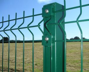 High Quality Wire Fencing (Galvanized or PVC Coated)