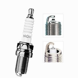 Ngk Spark Plug-Engine Plug