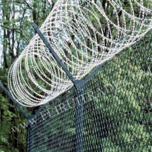 Barbed Wire and Fence in China pictures & photos