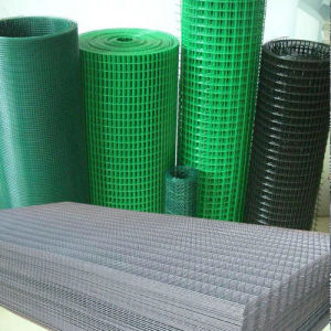 Polyethylene Coated Netting Welded Wire Mesh pictures & photos