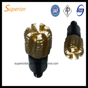 Good Performance API Water Well /Oil Well/ Gas Well PDC Drill Bits pictures & photos