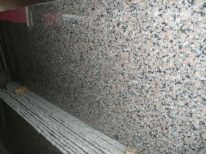 Red Granite Slabs/Tiles G563 for Flooring/Countertop/Wall Tile/Stair Steps pictures & photos