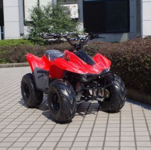 Manufacturer Cheapest Kids Gas Powered ATV 50cc 70cc (A05) pictures & photos