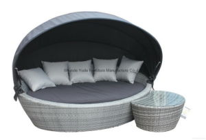 Canopy Day Bed