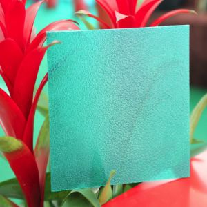 Polycarbonate 10 Years Warranty Frosted Sheet for Decoration pictures & photos