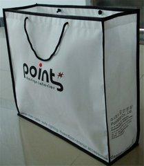 PP Woven/Non Woven Bag/ Shopping Bag/ Advertising Bag/Promotional Bag pictures & photos