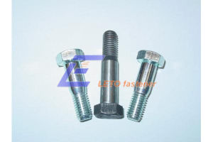 DIN609-Hexagon Fit Bolts pictures & photos