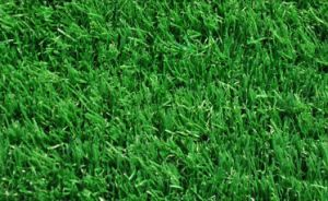 Ce Quality Artificial Grass for Soccer Fileld pictures & photos