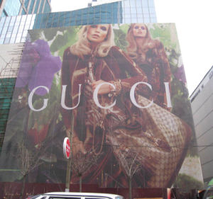 Outdoor Mesh Advertising Banner, Building Wraps Mesh Banner pictures & photos