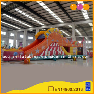 Kid Game Inflatable Amusement Park Bouncer and Slide (AQ13178) pictures & photos