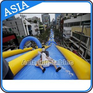 Giant Inflatable Water Slide, Commercial Use Long Slip Slide Inflatable Slide City pictures & photos
