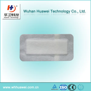 Wholesale 10*20cm or Custom Size and Shape Non Woven Adhesive Wound Dressing pictures & photos