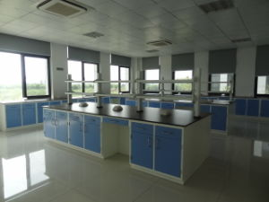 Steel Laboratory Furniture with New Model (JH-SL012) pictures & photos