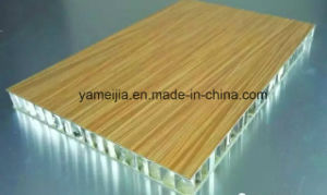 China Top Quality Wood Grain Aluminum Honeycomb Panels for Wall Facades pictures & photos