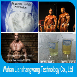 Testosterone Enanthate CAS 315-37-7 Primoteston Test E for Muscle Gain pictures & photos