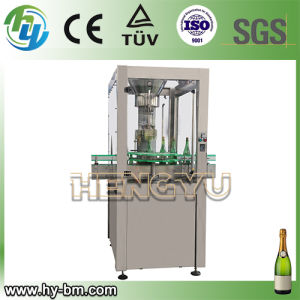 Ce Automatic Champagne Packing Machine (DSJ-1) pictures & photos