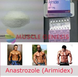 Anti-Estrogen Steroids Arimidex Powder Anastrozoles pictures & photos