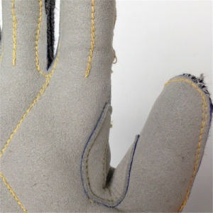 Hppe/Glass Fiber Safety Gloves with Micro Fibre Sewing pictures & photos