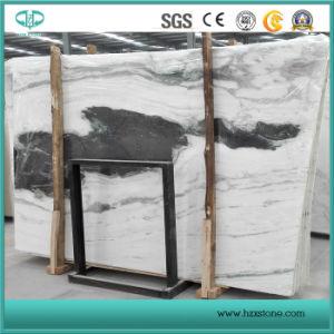 Jiangsu Quarry Panda White Marble Slabs, Black and White Marble pictures & photos
