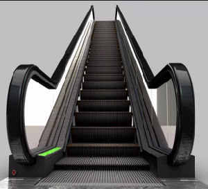 FUJI Zy Outdoor 35 Degree Escalator pictures & photos