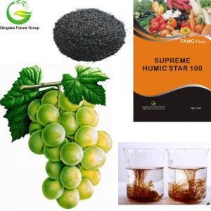 Bulk Humic Acid Organic Fertilizer pictures & photos