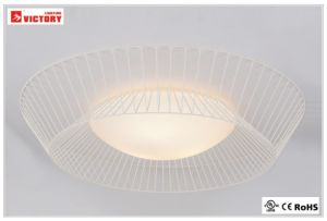 Modern Surface Simple Ceiling Light LED Lamp Style with Opal Glass pictures & photos