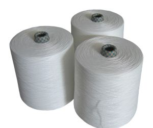 100% Raw White Spun Polyester Yarn 50/2 Sewing Yarn pictures & photos
