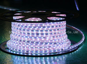 Wathet Color 60LEDs SMD5630 220V IP65 LED Rope Light pictures & photos