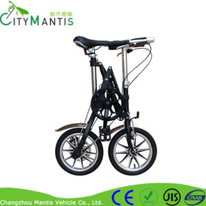 Foldable Urban Bicycle Yz-6-14 Bike pictures & photos