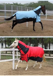 600d Resist Tearing Waterproof Turnout Horse Blanket pictures & photos