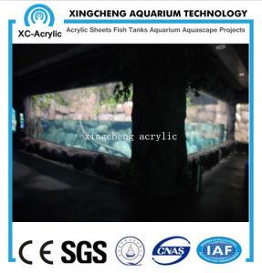 Large Marine Aquarium Acrylic Sea Park Project Price pictures & photos