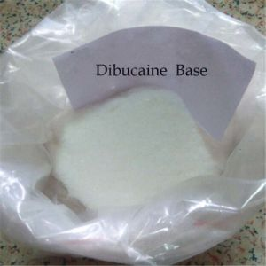 Top Quality Local Anesthetic Cinchocaine Dibucaine CAS 85-79-0 pictures & photos