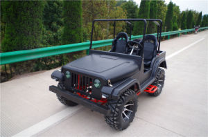 Hot Selling off Road Pedal Go Kart for Adult (JY-ATV020) pictures & photos