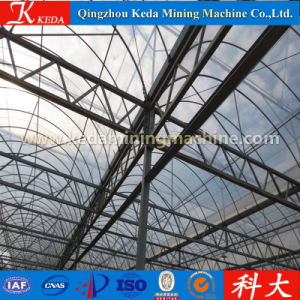 Plastic Film for Greenhouse, Easily Assembled Glass Garden Greenhouse pictures & photos