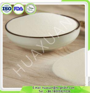 Halal Certificate Chicken Cartilage Collagen Powder Type II pictures & photos