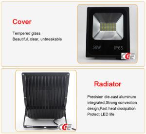 Factory Prices 30W/50W/80W/100W/150W Watt Energy Saving Metal Halide IP65 Outdoor Lapms pictures & photos