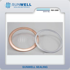 Stamping Jacket Gaskets for Gas Mains Heat Exchangers Pressure Vessels Pumps etc pictures & photos