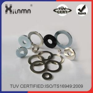Rare Earth Ring Permanent Neodymium Magnet for Speaker pictures & photos