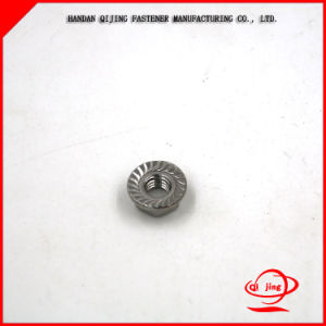 Stainless Steel Flange Lock Nuts pictures & photos