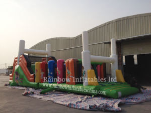 Inflatable Long Obstacle Course for Fun pictures & photos